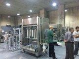 치약을%s Packagine 기계 충전물 기계장치
