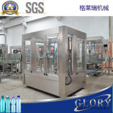 Chaîne de production de mise en bouteilles de machine à emballer de remplissage de bouteilles en plastique liquide de l'eau