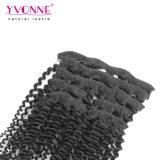 Yvonne humanos brasileño Hair Extension Clip en la extensión de cabello el cabello rizado rizado