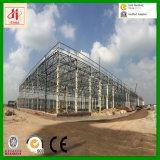 大きい構築デザイン鉄骨構造の倉庫