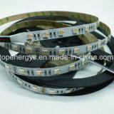 Alta striscia SMD5050 LED di lumen DC24V 60LEDs/M con Ce RoHS