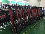 شامل شعبيّة 500 محرك مدينة [إ] درّاجة [إ-بيك] [إلكتريك بوور] [إ] درّاجة