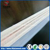madera contrachapada del anuncio publicitario de la base del álamo del material de construcción de 1220*2440m m