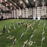 大きいスペースが付いている鉄骨構造の構築のサッカーの運動場