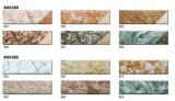 Azulejos de la pared del ladrillo de revestimiento de la inyección de tinta de HD Digitaces Tile/Exterior