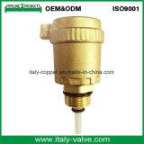 L'ottone personalizzato di qualità ha forgiato la valvola del cunicolo di ventilazione (IC-3074)