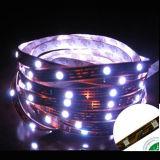 3528 SMD impermeabilizan el CE y RoHS de la iluminación de tira del LED IP64 certificados
