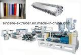 Feuille de empaquetage d'animal familier de PVC pp faisant la chaîne de production de bobine de machine