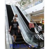 Japan-China Join Venture Rolltreppe zum Verkauf