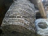 中国ISO 9001の証明された電流を通された有刺鉄線