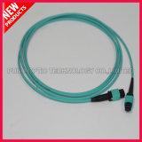 12 섬유 광학적인 OM3 10G MPO 접속 코드