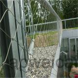 Maglia flessibile della corda dell'acciaio inossidabile per obbligazione del giardino
