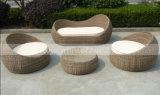 Напольная Wicker софа установленное Mtc-288 мебели сада