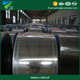 DIP высокого качества предложения горячий гальванизировал стальные катушки SGCC