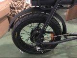 [20ينش] شاطئ طرّاد سمين إطار العجلة جبل درّاجة كهربائيّة