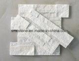 Steen van de Richel van de Sesam van China de Lokale Gele