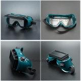 De Beschermende bril van het lassen met het Glas van het Lassen van de Lens van de Rechthoek (WG114)