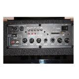 """Contenitore di riproduttore acustico dell'altoparlante di Ubs/SD del Portable 8 """"/altoparlante di Rechargerable"""