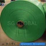 Tela tubular tecida PP verde para fazer sacos