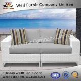Vimine buono di Furnir Wf-17009 gruppo della disposizione dei posti a sedere del sofà delle 2 parti con gli ammortizzatori