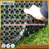 Estera de goma del resbalón anti de las Anti-Bacterias para la hierba al aire libre