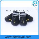 Les chaussures respirables de maille d'animal familier pour le crabot imperméable à l'eau amorce la bande magique r3fléchissante