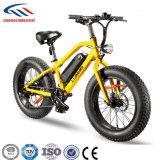 Nueva bicicleta gorda eléctrica del neumático 20inch para la venta