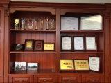 Kies/de Dubbele Straatlantaarn Pool van het Staal van de Prijs van de Concurrentie van het Wapen uit