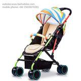 Einfacher leichter faltender Baby-Spaziergänger 3 in 1