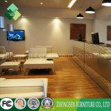 Guangdong-Möbel-Gewebe-Sofa-Stühle verwendet auf Hotel-Vorhalle