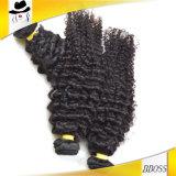 2016年にほとんどのPpularを編む上1の人間の毛髪