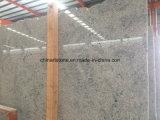 Плитка строительного материала гранита Китая (белизна Кашмира) для пола