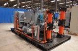 移動式CNGのパキスタンのための圧縮機によってスキッド取付けられる娘端末
