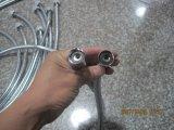 Boyau de douche flexible inoxidable de Steeel, EPDM, noix de rotation, conformité d'Acs