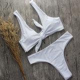 Swimwear sexy delle Due-Parti di Biquini della fabbrica del bikini solido brasiliano all'ingrosso delle donne