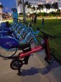 """電気スクーターまたは蹴りのスクーターか子供の電気スクーターを折っている昇進の""""子供および大人12人"""