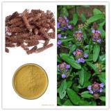 Extracto vulgaris del Prunella, extracto común del punto de Selfheal