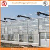Сельское Хозяйство Multi Span Glass Зеленый Дом для Посадки