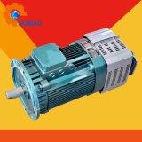 Motor del alzamiento del edificio del motor del alzamiento del pasajero (YZZ132M-4)
