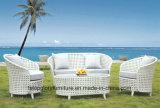 Nuovi vimine del patio del giardino/mobilia sofà del rattan (TG-022)