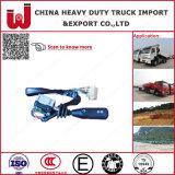 Cino ricambi auto dell'interruttore di combinazione dei pezzi di ricambio del camion (Wg9130583017)