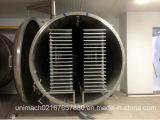 Secador de gelo do vegetal e da fruta (FDG)