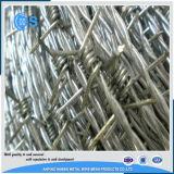 二重ねじれの鋼鉄によって電流を通される有刺鉄線の塀