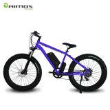 bicicleta elétrica da velocidade da bateria 9 do Li-íon de 48V 750W 14.5ah