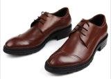 仕上げメンズ空想の革なまけ者の履物の靴にワックスを掛けること