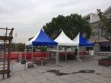 De Tent van de Partij van de Markttent van het huwelijk voor Tent van de Luifel van het Embleem van de Douane van de Verkoop de Op zwaar werk berekende