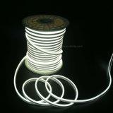 LED 밧줄 빛 연결관을 바꾸는 두 배 옆 Waterprof LED 지구 연한 색