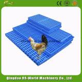 Пол предкрылка фермы цыпленка пластичный