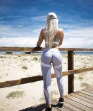 Ghette di forma fisica delle ghette della stampa del reticolo della maglia per le donne che mettono in mostra i pantaloni bianchi neri sottili elastici dei Leggins di allenamento