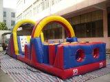 Curso de obstáculo inflable al aire libre del túnel del desafío (T8-003)